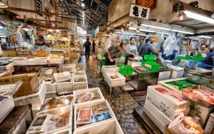 At the Tsukiji Fish Market.